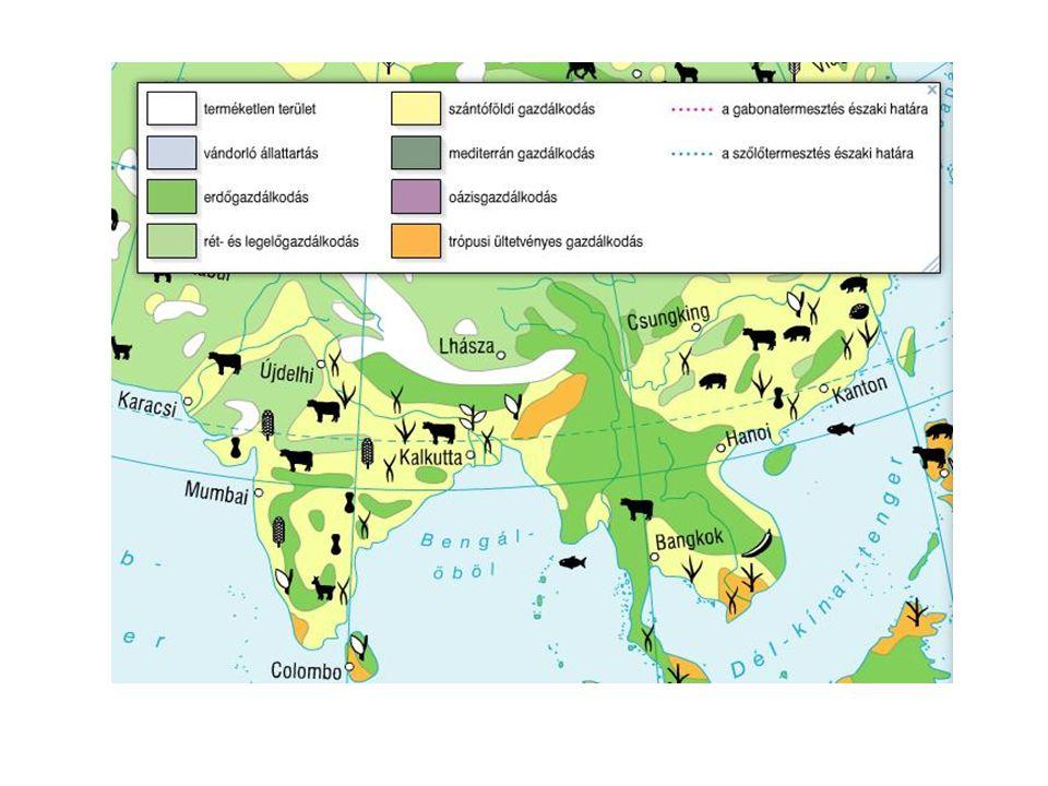 India legjellegzetesebb mezőgazdasági termékei és elterjedésük a domborzat és a csapadékeloszlás függvényében