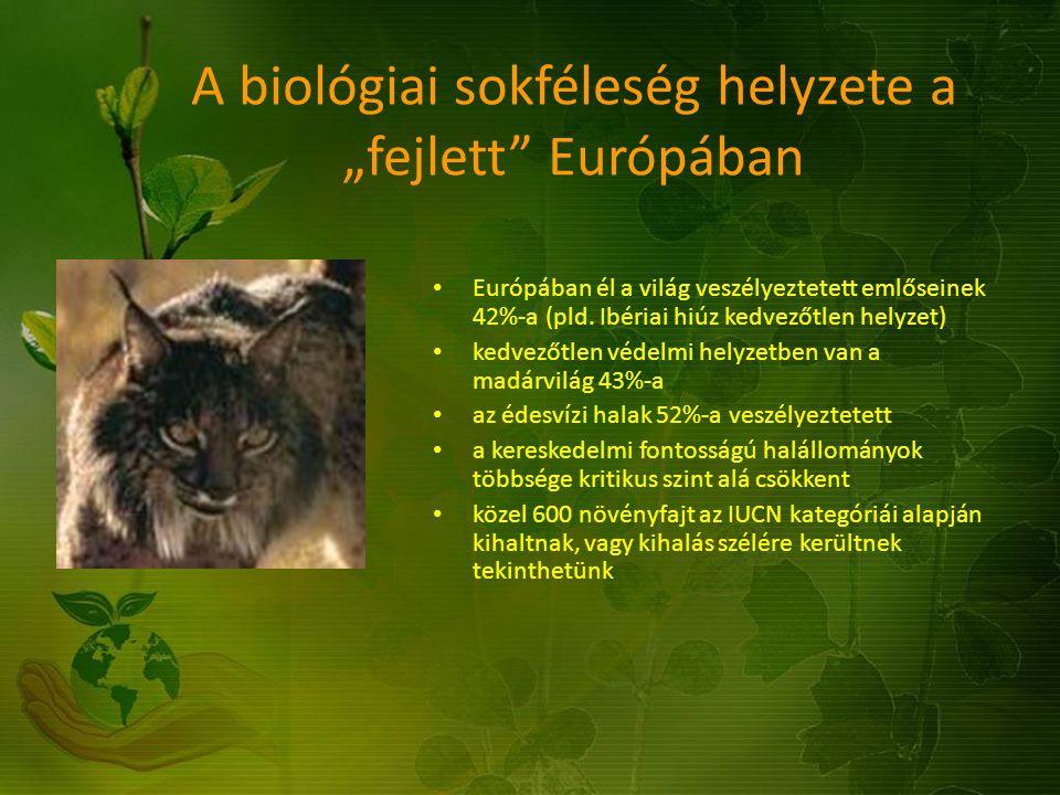 """A biológiai sokféleség helyzete a """"fejlett"""" Európában Európában él a világ veszélyeztetett emlőseinek 42%-a (pld. Ibériai hiúz kedvezőtlen helyzet) ke"""
