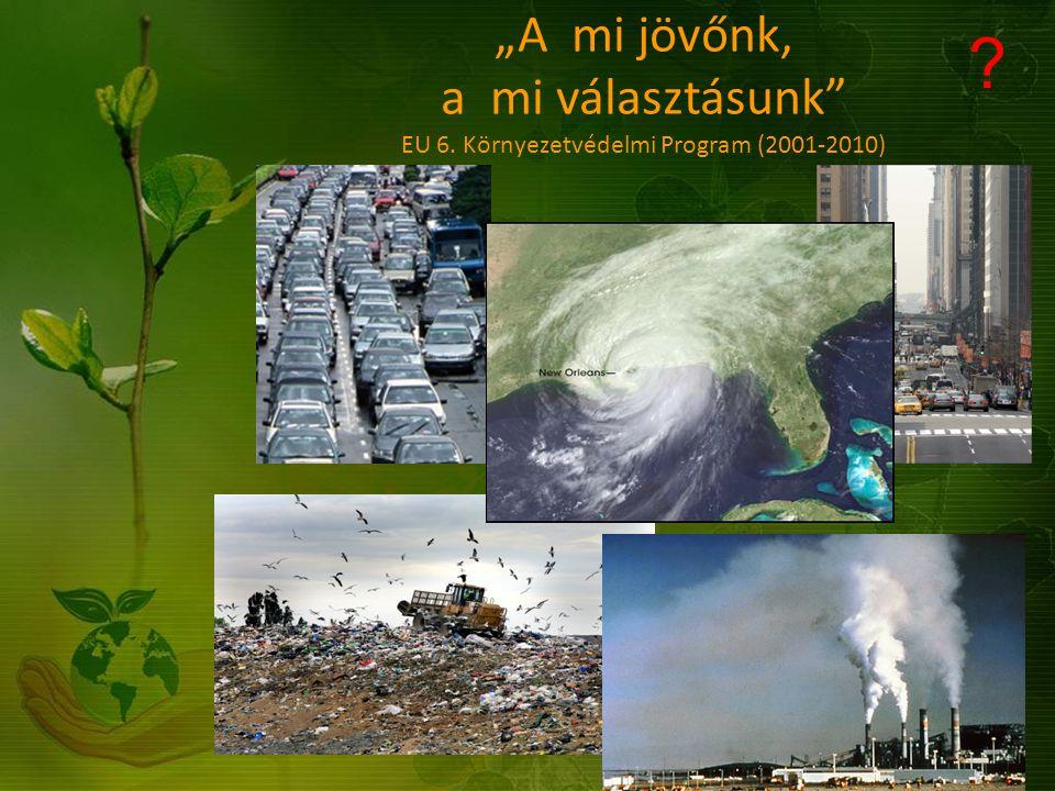 Hatodik Környezetvédelmi Akcióprogram (2001-2010) Négy nagy területre összpontosít: Éghajlatváltozás ( eszközei: Közös megvalósítás, emisszió- kereskedelem, tiszta fejlesztési mechanizmus ) Természetvédelem és biodiverzitás ( főleg élőhelyek védelme, természetvédelmi területek bővítése ) Környezet és egészség Természeti erőforrások és hulladék