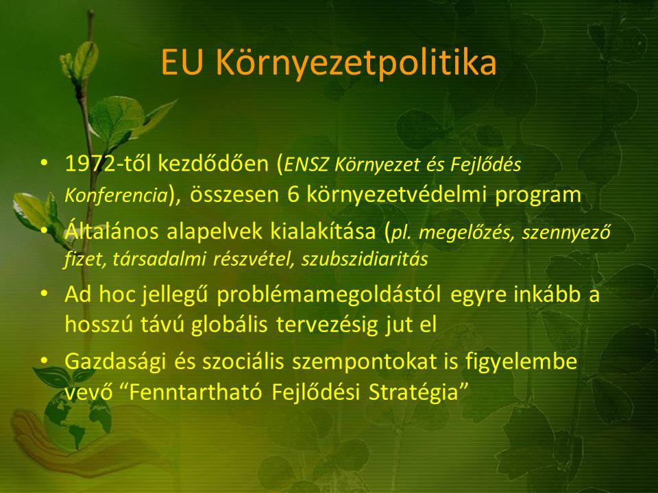EU Környezetpolitika 1972-től kezdődően ( ENSZ Környezet és Fejlődés Konferencia ), összesen 6 környezetvédelmi program Általános alapelvek kialakítás