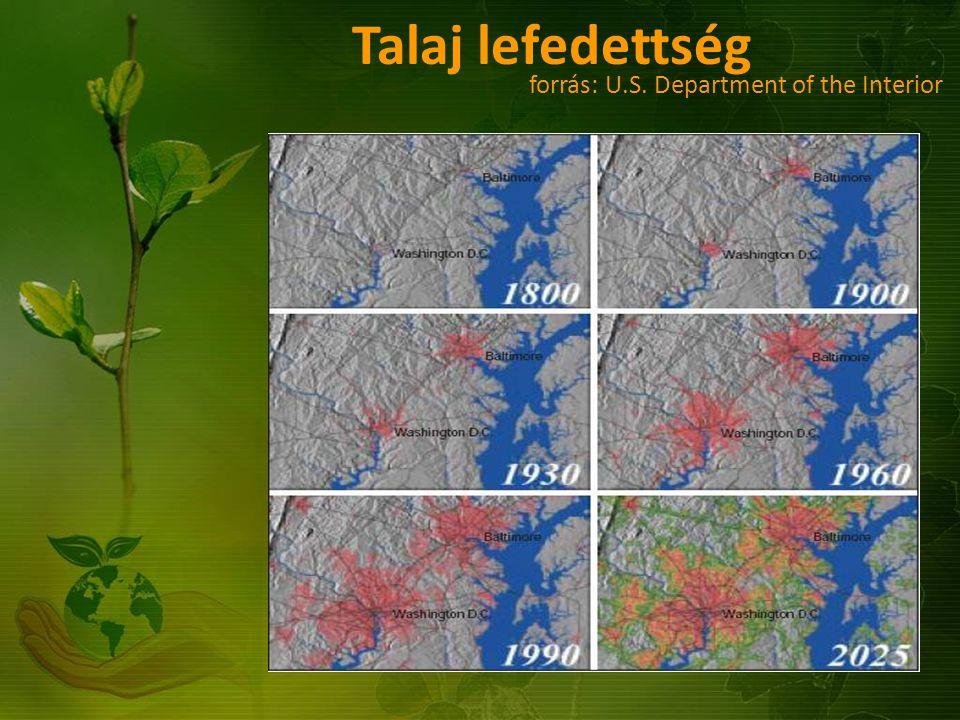 AZ EMBERISÉG EGY FŐRE ESŐ ÖKOLÓGIAI LÁBNYOMA ÉS BIOKAPACITÁS, 1961-2001 (forrás: WWF) AZ EMBERISÉG EGY FŐRE ESŐ ÖKOLÓGIAI LÁBNYOMA ÉS A BIOKAPACITÁS, 1961-2001 Globális hektár Biokapacitás Ökológiai lábnyom