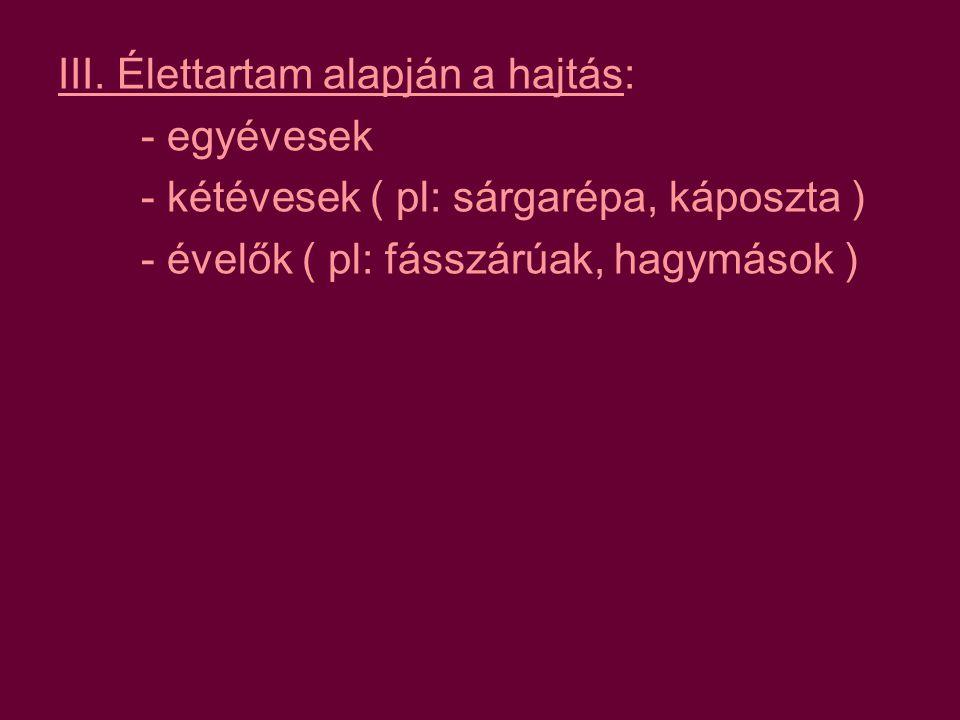 2.) lágyszár