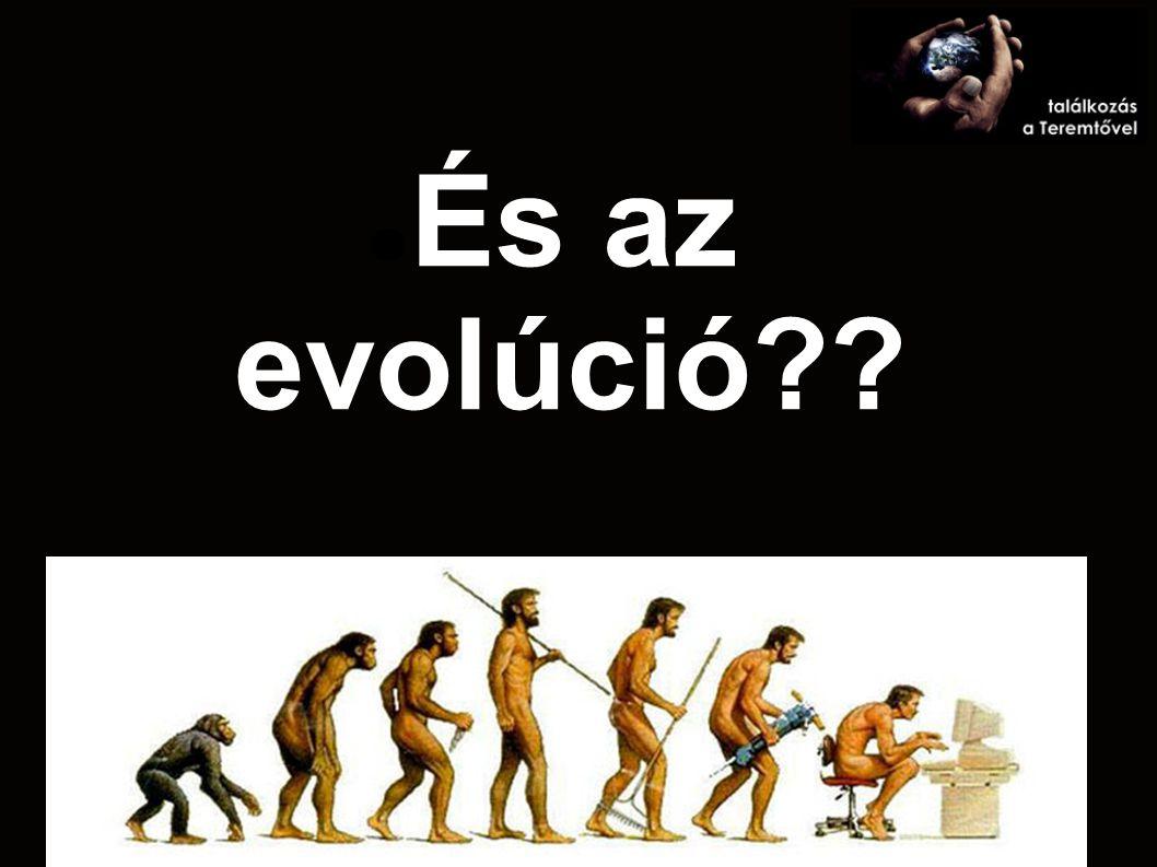 És az evolúció??