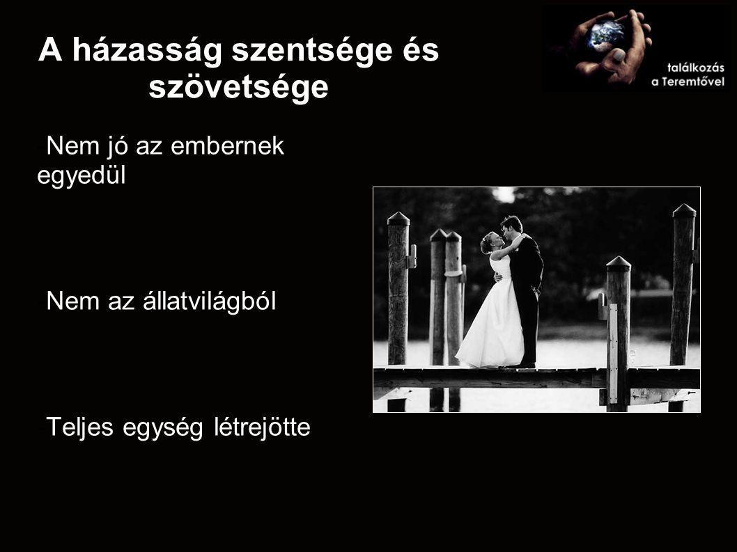 A házasság szentsége és szövetsége -Nem jó az embernek egyedül -Nem az állatvilágból -Teljes egység létrejötte