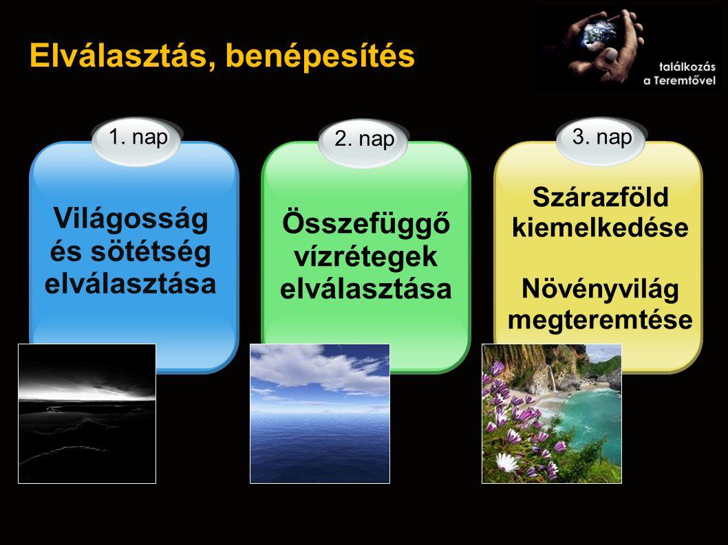 Elválasztás, benépesítés Világosság és sötétség elválasztása 2. nap Összefüggő vízrétegek elválasztása Szárazföld kiemelkedése Növényvilág megteremtés