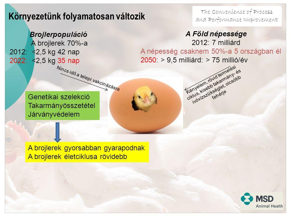 The Convenience of Process and Performance Improvement Brojlerpopuláció A brojlerek 70%-a 2012: <2,5 kg 42 nap 2022: <2,5 kg 35 nap Nincs idő a telepi vakcinázásra A Föld népessége 2012: 7 milliárd A népesség csaknem 50%-a 5 országban él 2050: > 9,5 milliárd: > 75 millió/év Kényelem, rövid termelési ciklus, kisebb takarmány- és ivóvízszükséglet, olcsóbb fehérje Környezetünk folyamatosan változik Genetikai szelekció Takarmányösszetétel Járványvédelem A brojlerek gyorsabban gyarapodnak A brojlerek életciklusa rövidebb
