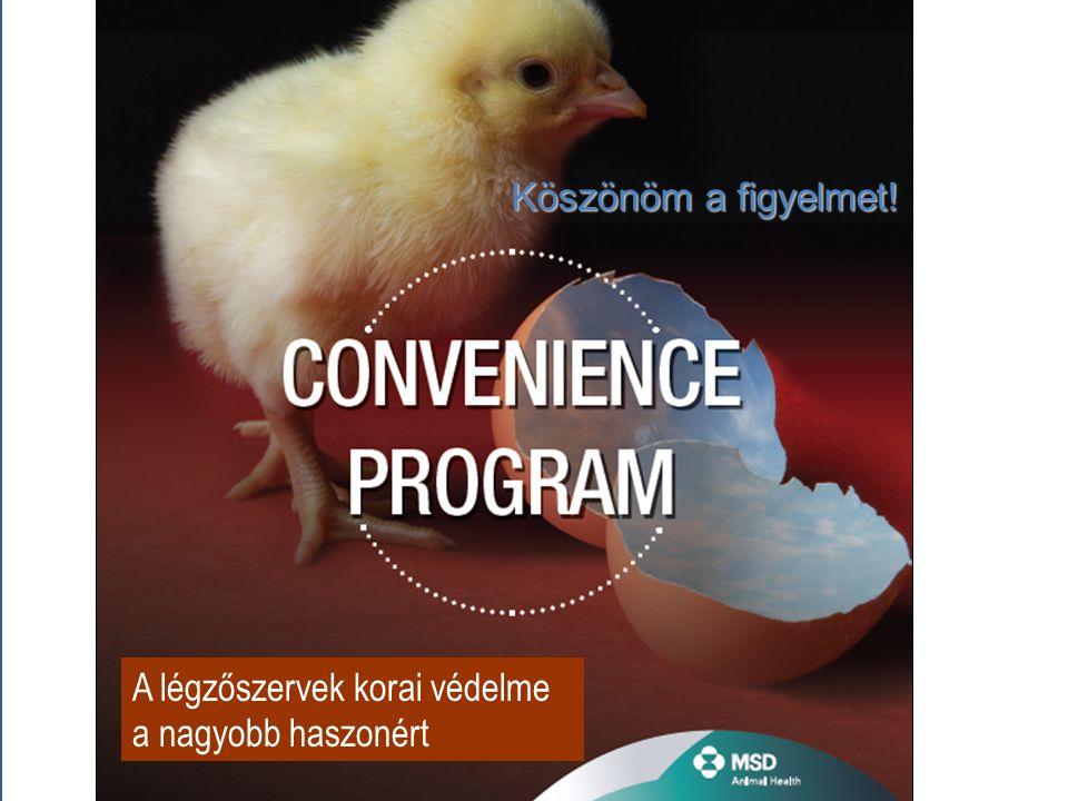 The Convenience of Process and Performance Improvement A légzőszervek korai védelme a nagyobb haszonért Köszönöm a figyelmet!