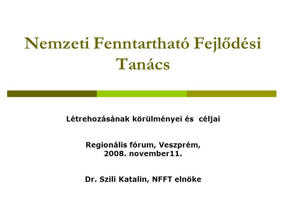 Az NFFT tevékenységének irányai  A NFFS megújításának kezdeményezése, a fenntartható társadalom megvalósítását célzó hosszú távú program kialakítása széleskörű társadalmi párbeszédben  Az OGY elé kerülő egyes programok, jogszabály-tervezetek fenntarthatósági szempontú véleményezése  A társadalom ismereteinek bővítése, tudatosságának növelése a fenntartható fejlődésről  A fenntartható fejlődést elősegítő nemzetközi folyamatokba való bekapcsolódás