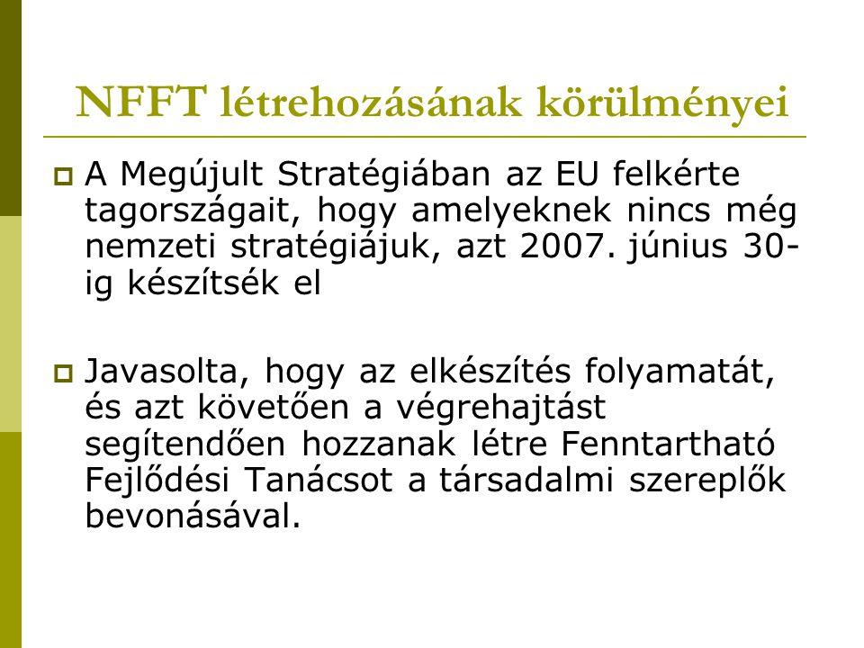 NFFT létrehozásának körülményei  A Megújult Stratégiában az EU felkérte tagországait, hogy amelyeknek nincs még nemzeti stratégiájuk, azt 2007. júniu