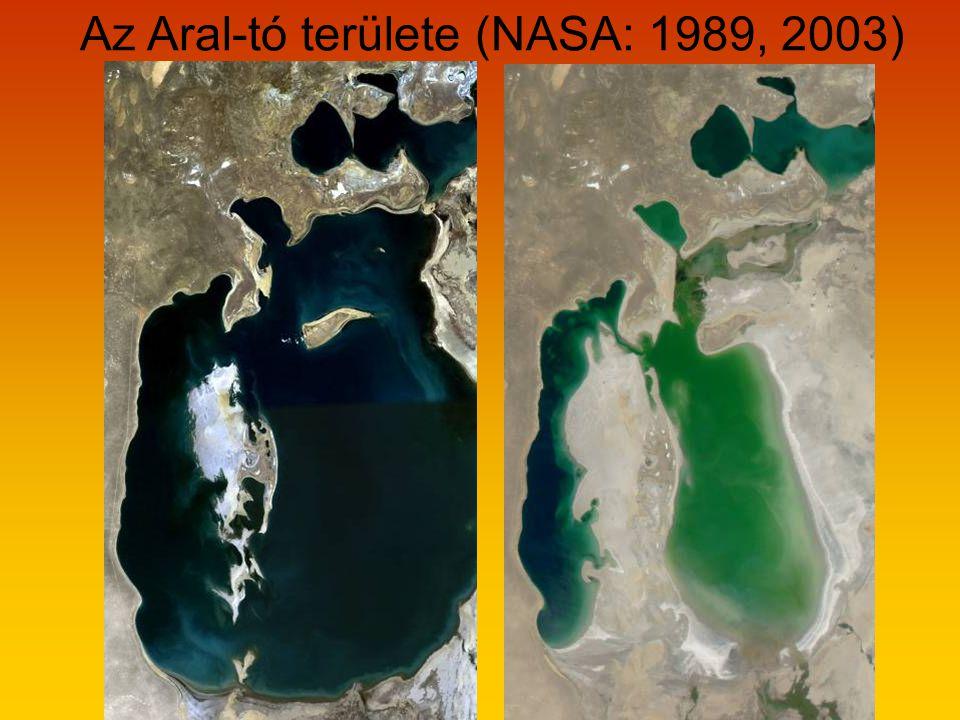 Az Aral-tó területe (NASA: 1989, 2003)