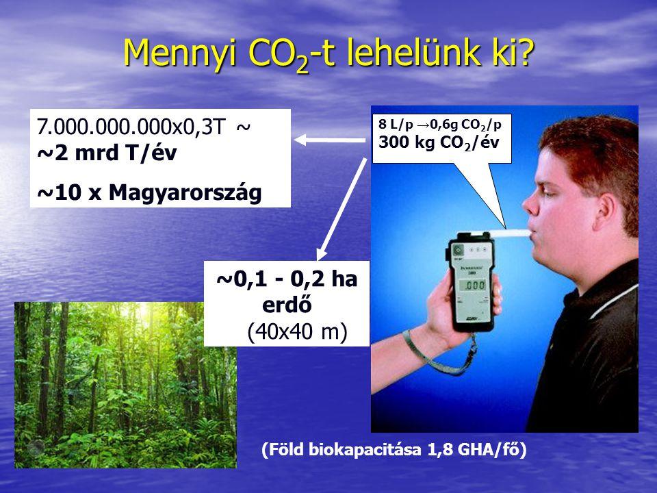 Mennyi CO 2 -t lehelünk ki? 8 L/p → 0,6g CO 2 /p 300 kg CO 2 /év 7.000.000.000x0,3T ~ ~2 mrd T/év ~10 x Magyarország ~0,1 - 0,2 ha erdő (40x40 m) (Föl