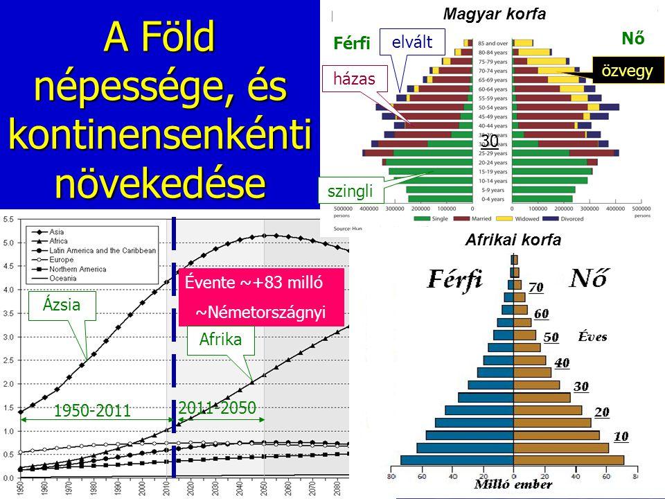 A Föld népessége, és kontinensenkénti növekedése Évente ~+83 milló ~Németországnyi 1950-2011 Ázsia Afrika 2011-2050 Férfi Nő szingli házas elvált özve