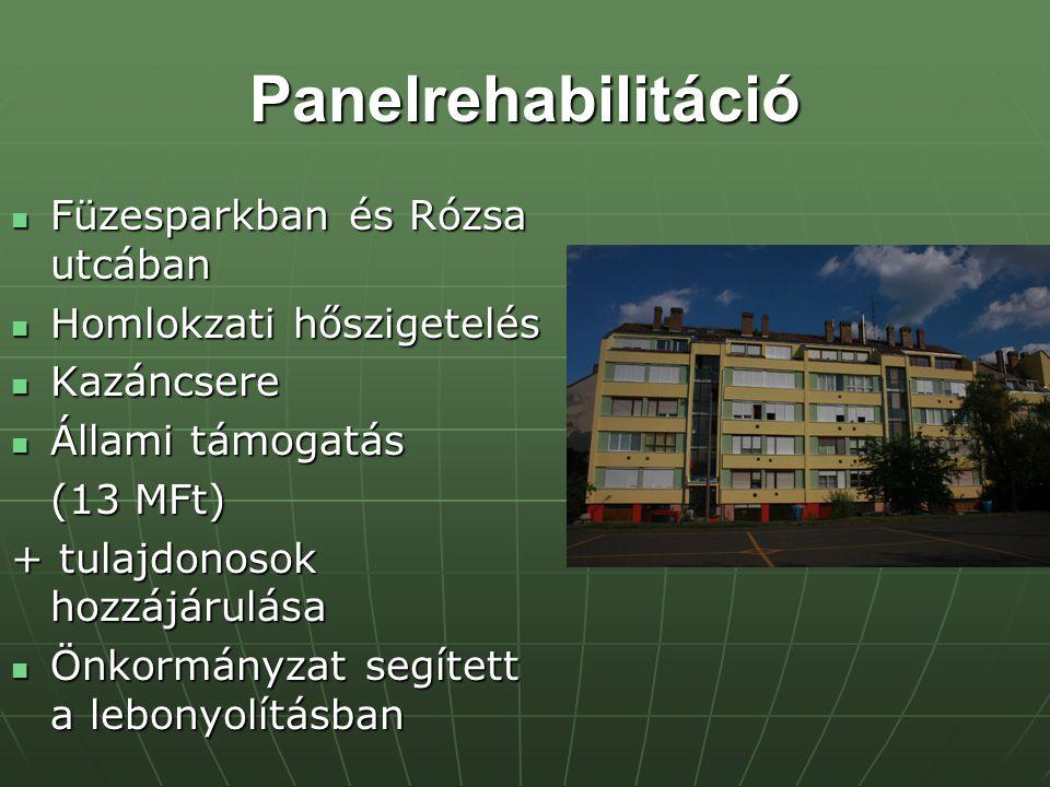 Panelrehabilitáció Füzesparkban és Rózsa utcában Füzesparkban és Rózsa utcában Homlokzati hőszigetelés Homlokzati hőszigetelés Kazáncsere Kazáncsere Állami támogatás Állami támogatás (13 MFt) + tulajdonosok hozzájárulása Önkormányzat segített a lebonyolításban Önkormányzat segített a lebonyolításban