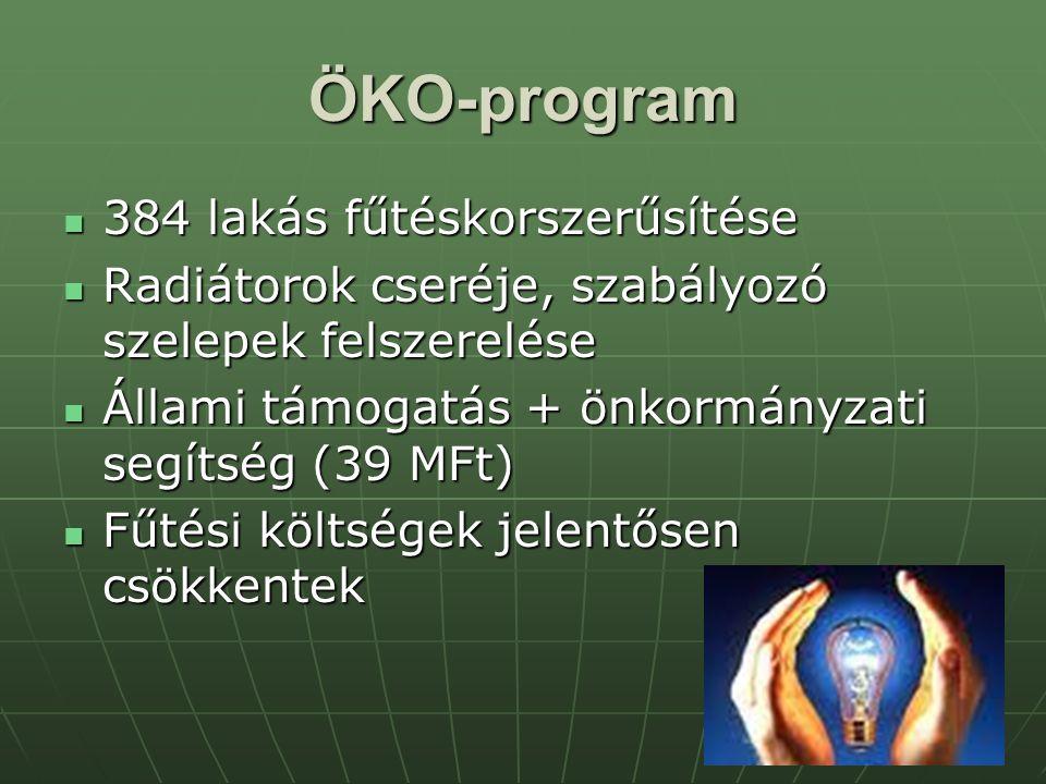 ÖKO-program 384 lakás fűtéskorszerűsítése 384 lakás fűtéskorszerűsítése Radiátorok cseréje, szabályozó szelepek felszerelése Radiátorok cseréje, szabályozó szelepek felszerelése Állami támogatás + önkormányzati segítség (39 MFt) Állami támogatás + önkormányzati segítség (39 MFt) Fűtési költségek jelentősen csökkentek Fűtési költségek jelentősen csökkentek