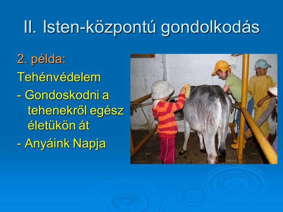II. Isten-központú gondolkodás 2. példa: Tehénvédelem - Gondoskodni a tehenekről egész életükön át - Anyáink Napja