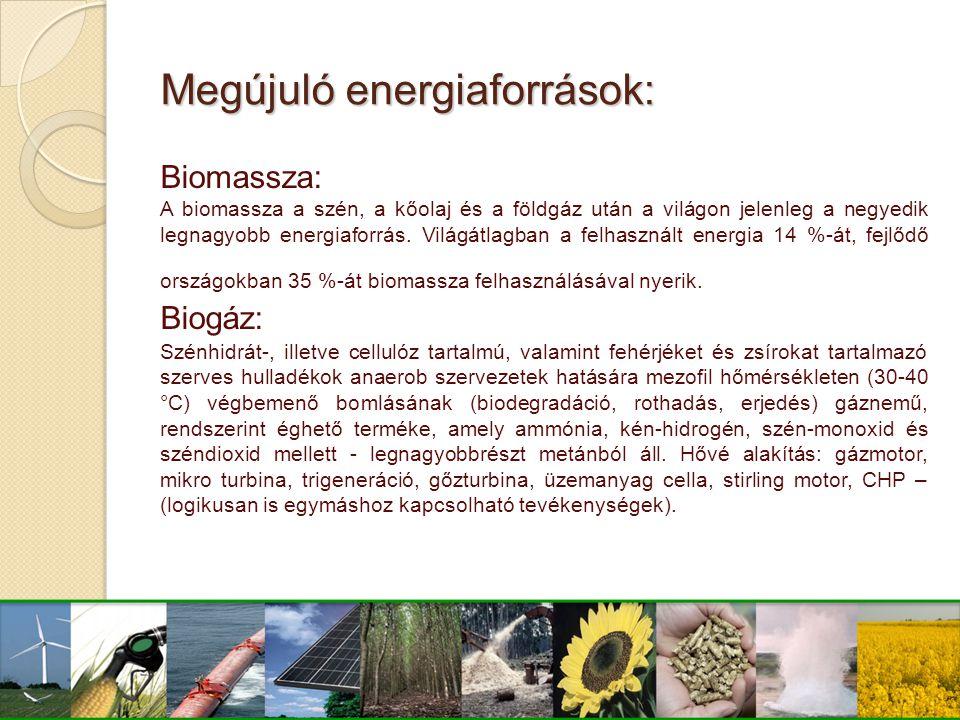 Megújuló energiaforrások: Biomassza: A biomassza a szén, a kőolaj és a földgáz után a világon jelenleg a negyedik legnagyobb energiaforrás. Világátlag