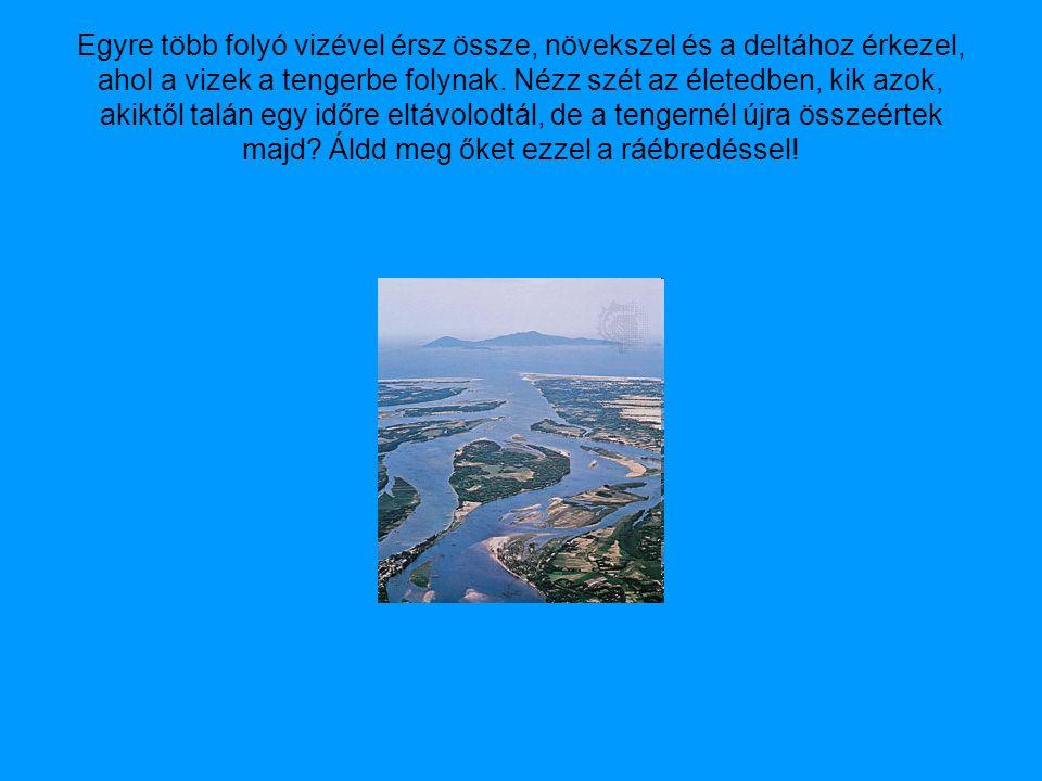 Egyre több folyó vizével érsz össze, növekszel és a deltához érkezel, ahol a vizek a tengerbe folynak.