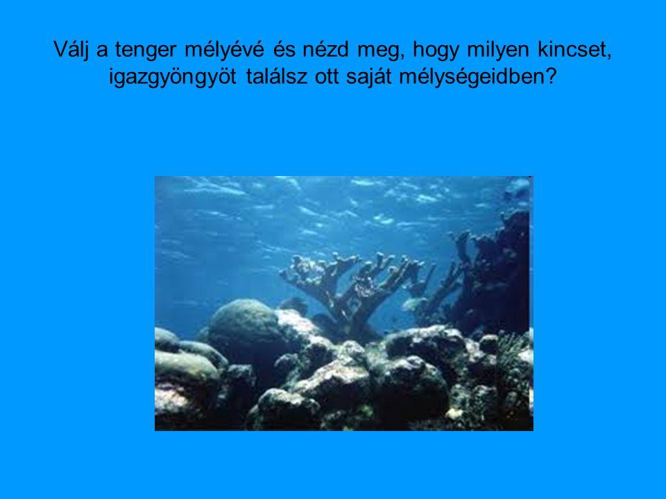 Válj a tenger mélyévé és nézd meg, hogy milyen kincset, igazgyöngyöt találsz ott saját mélységeidben