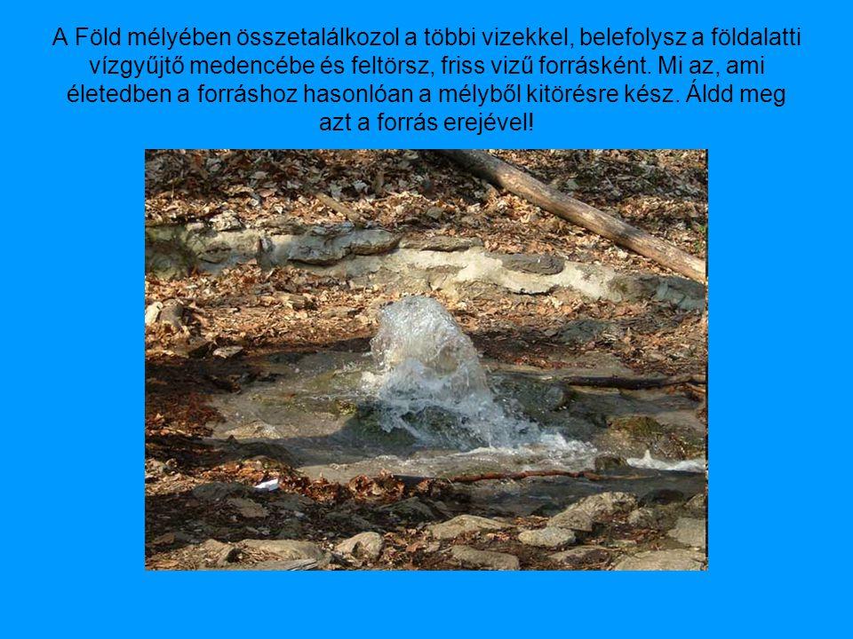 A Föld mélyében összetalálkozol a többi vizekkel, belefolysz a földalatti vízgyűjtő medencébe és feltörsz, friss vizű forrásként.