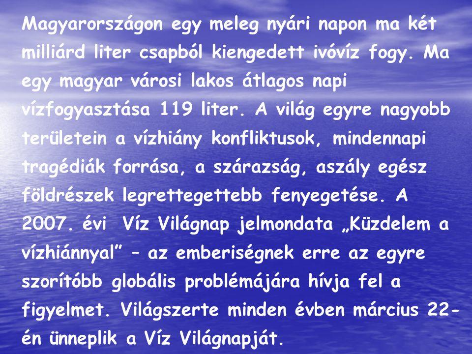 Magyarországon egy meleg nyári napon ma két milliárd liter csapból kiengedett ivóvíz fogy. Ma egy magyar városi lakos átlagos napi vízfogyasztása 119