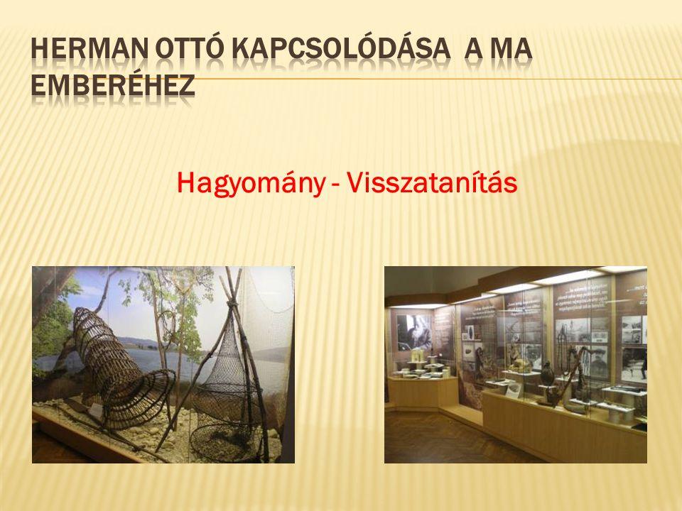 I.Múzeumot az iskolába – vándorkiállítás és ismeretterjesztő előadások a 9–12.