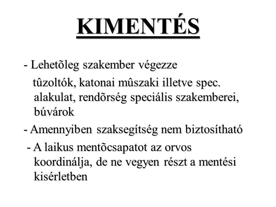 KIMENTÉS - Lehetõleg szakember végezze tûzoltók, katonai mûszaki illetve spec.