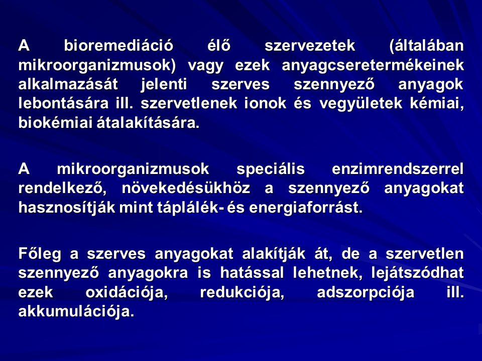 Az üledék összes Cr és Cr(VI) koncentrációja 1998-ban