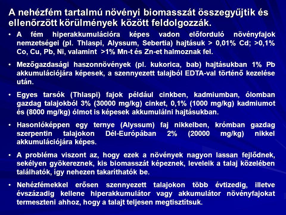 A nehézfém tartalmú növényi biomasszát összegyűjtik és ellenőrzött körülmények között feldolgozzák. A fém hiperakkumulációra képes vadon előforduló nö