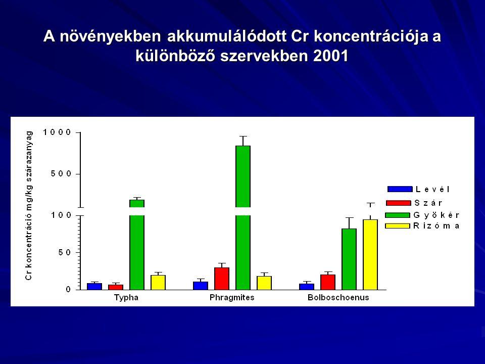A növényekben akkumulálódott Cr koncentrációja a különböző szervekben 2001