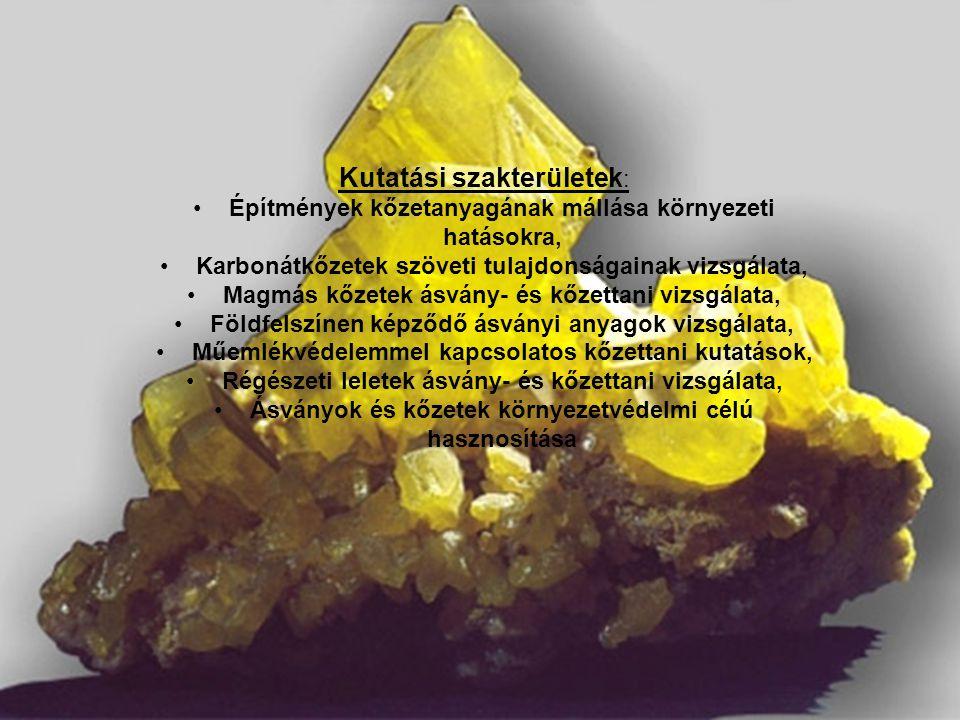 Kutatási szakterületek : Építmények kőzetanyagának mállása környezeti hatásokra, Karbonátkőzetek szöveti tulajdonságainak vizsgálata, Magmás kőzetek ásvány- és kőzettani vizsgálata, Földfelszínen képződő ásványi anyagok vizsgálata, Műemlékvédelemmel kapcsolatos kőzettani kutatások, Régészeti leletek ásvány- és kőzettani vizsgálata, Ásványok és kőzetek környezetvédelmi célú hasznosítása