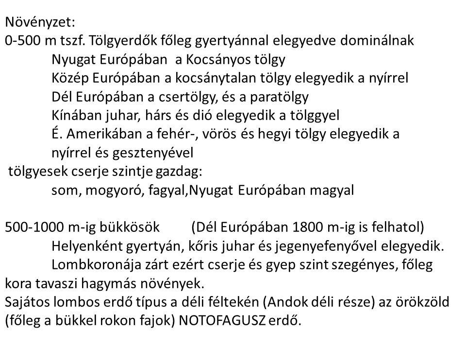 Növényzet: 0-500 m tszf. Tölgyerdők főleg gyertyánnal elegyedve dominálnak Nyugat Európában a Kocsányos tölgy Közép Európában a kocsánytalan tölgy ele