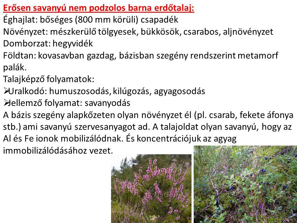 Erősen savanyú nem podzolos barna erdőtalaj: Éghajlat: bőséges (800 mm körüli) csapadék Növényzet: mészkerülő tölgyesek, bükkösök, csarabos, aljnövény