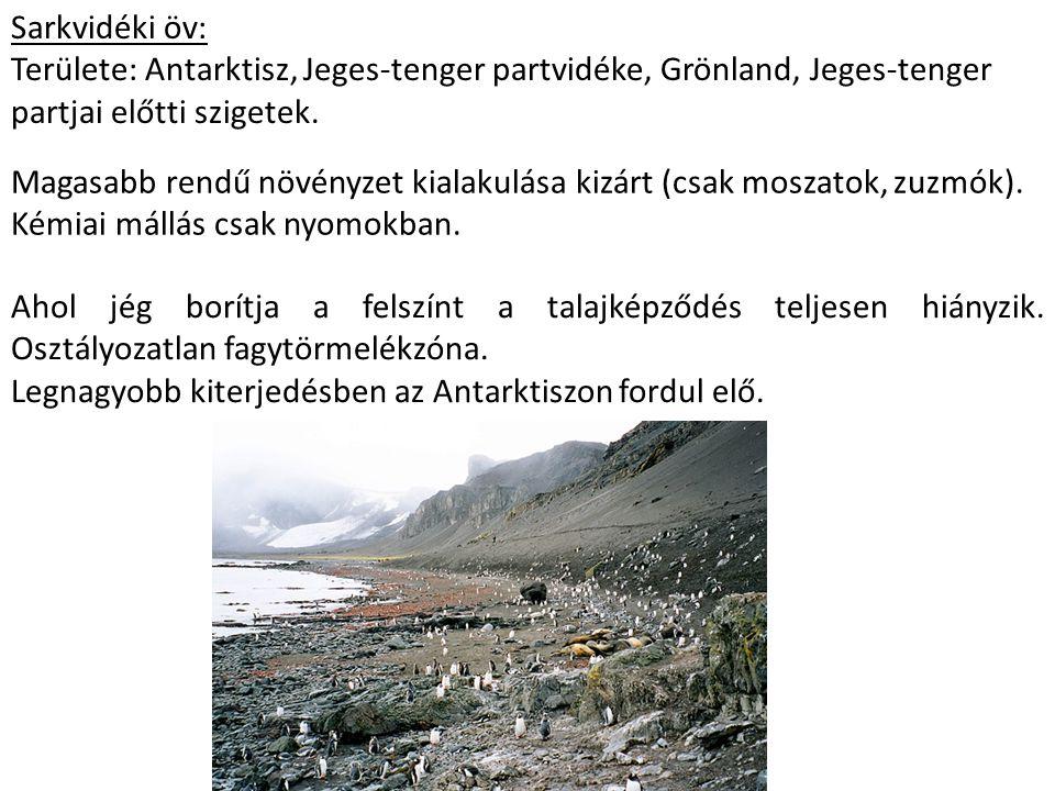 Sarkvidéki öv: Területe: Antarktisz, Jeges-tenger partvidéke, Grönland, Jeges-tenger partjai előtti szigetek. Magasabb rendű növényzet kialakulása kiz