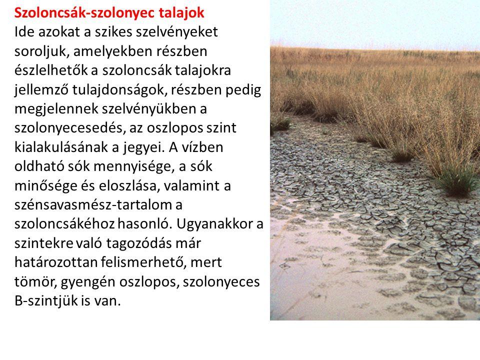 Szoloncsák-szolonyec talajok Ide azokat a szikes szelvényeket soroljuk, amelyekben részben észlelhetők a szoloncsák talajokra jellemző tulajdonságok, részben pedig megjelennek szelvényükben a szolonyecesedés, az oszlopos szint kialakulásának a jegyei.