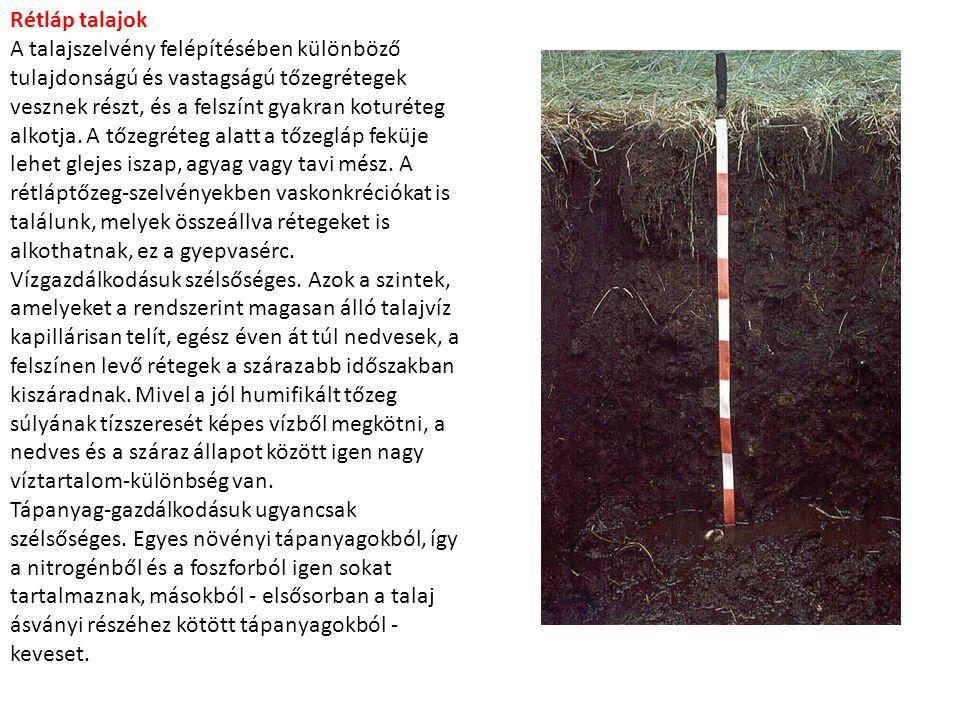 Rétláp talajok A talajszelvény felépítésében különböző tulajdonságú és vastagságú tőzegrétegek vesznek részt, és a felszínt gyakran koturéteg alkotja.