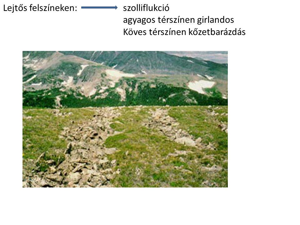 Lejtős felszíneken: szolliflukció agyagos térszínen girlandos Köves térszínen kőzetbarázdás