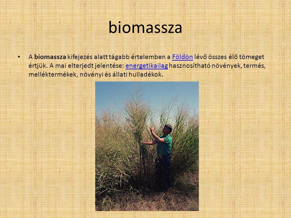 biomassza A biomassza kifejezés alatt tágabb értelemben a Földön lévő összes élő tömeget értjük. A mai elterjedt jelentése: energetikailag hasznosítha