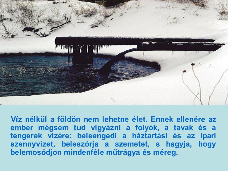 Víz nélkül a földön nem lehetne élet.