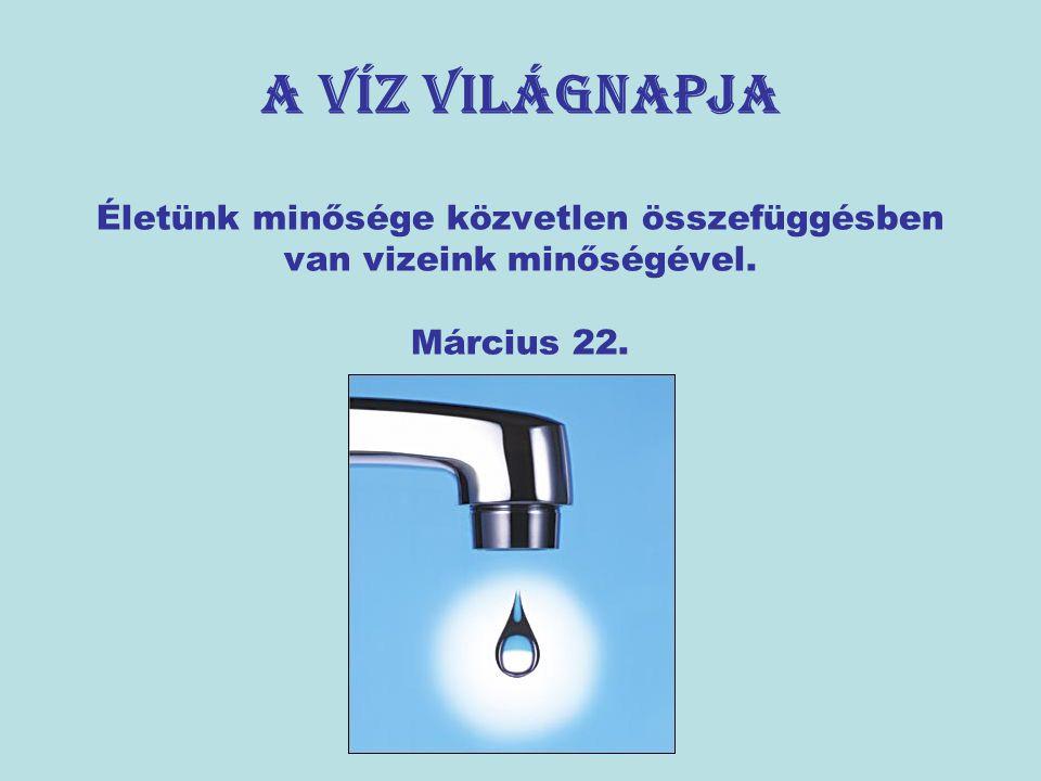 A víz világnapja Életünk minősége közvetlen összefüggésben van vizeink minőségével. Március 22.