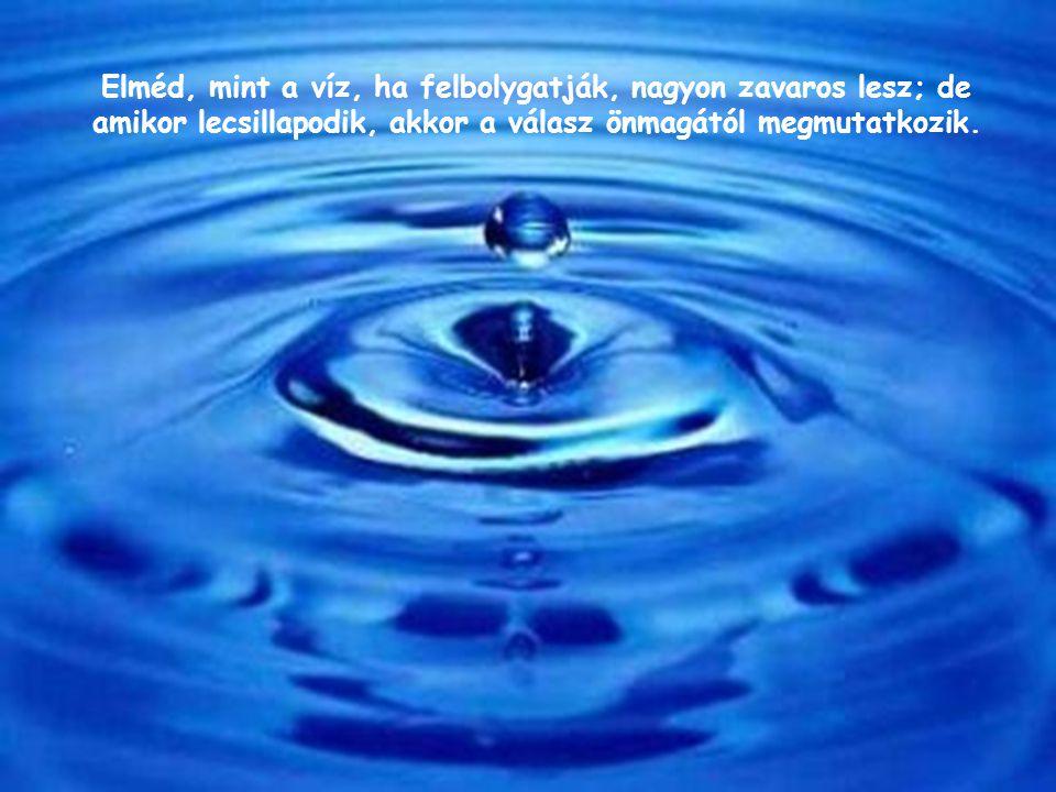 Elméd, mint a víz, ha felbolygatják, nagyon zavaros lesz; de amikor lecsillapodik, akkor a válasz önmagától megmutatkozik.