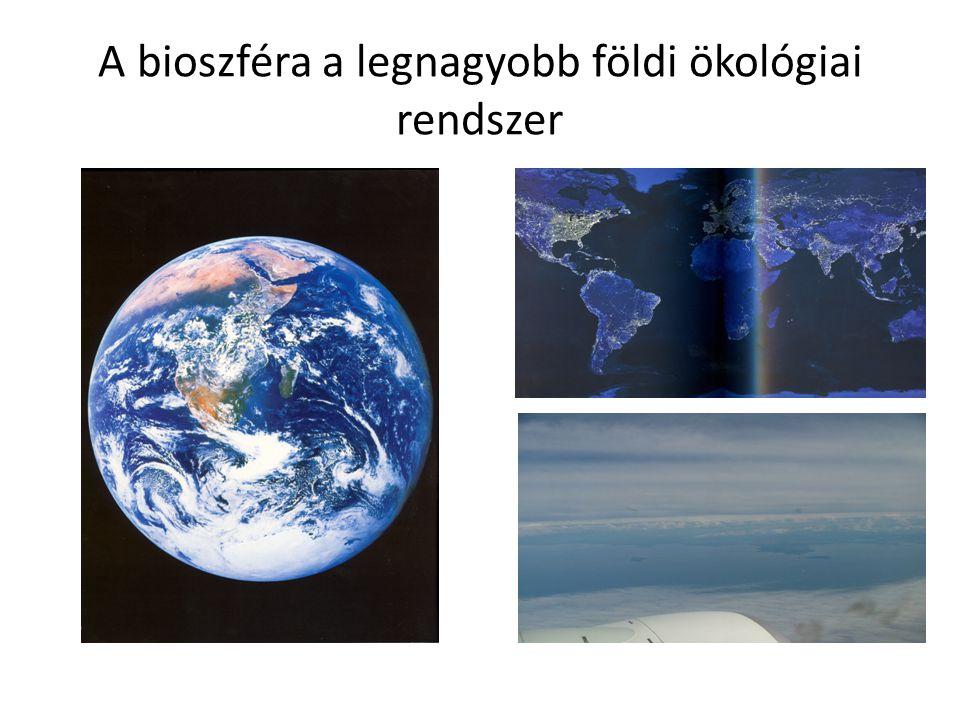 A bioszféra a legnagyobb földi ökológiai rendszer