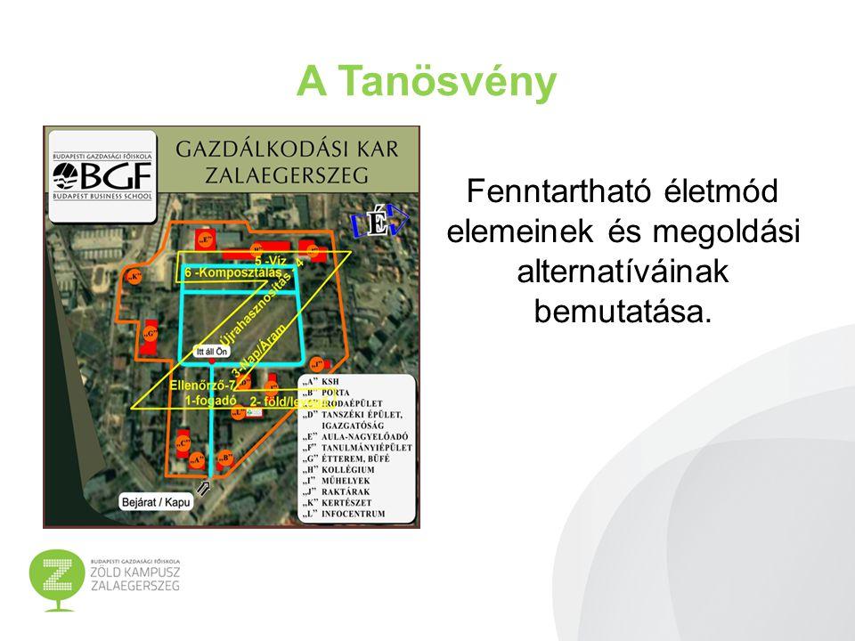 A Tanösvény állomásai GEOTERMIKUS RENDSZEREK Infocentrum (Társadalmi Infrastrukturális Operatív Program (TIOP 1.3.1.) Földhő hasznosítása Hőszivattyú rendszer Fő cél: felhívni a figyelmet a FÖLD belső hőjéből származó energianyerési lehetőségekre.