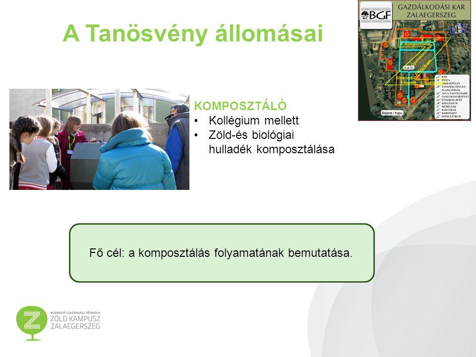 A Tanösvény állomásai KOMPOSZTÁLÓ Kollégium mellett Zöld-és biológiai hulladék komposztálása Fő cél: a komposztálás folyamatának bemutatása.