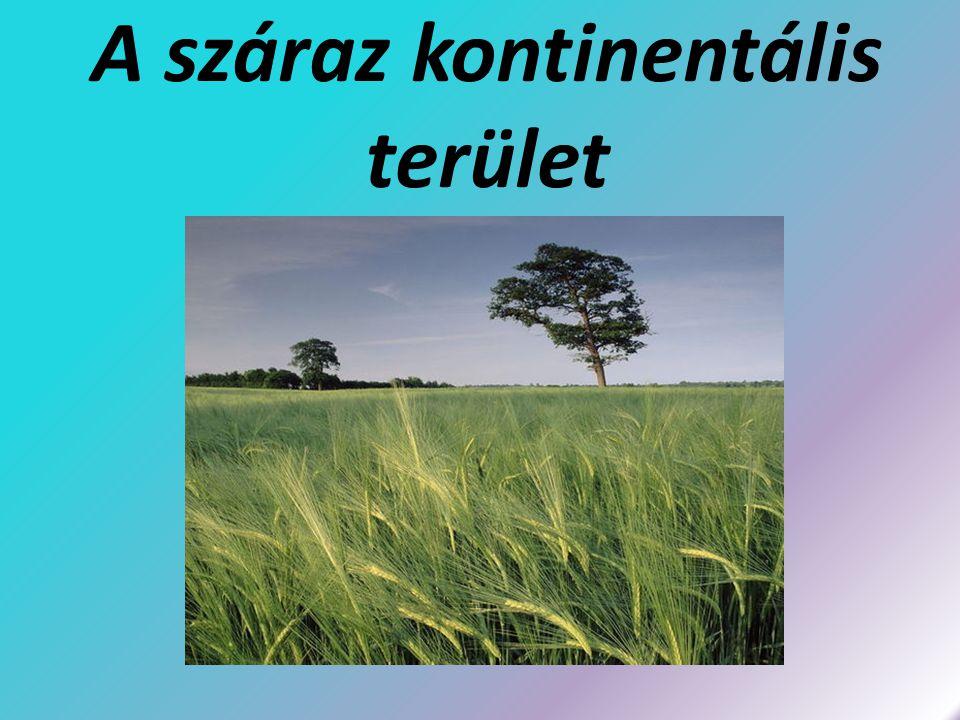 Gazdaság Gabonatermesztés (a Föld egyik legjelentősebb búzatermő tája) Állattenyésztés (sertés és szarvasmarha) Cukorrépa, burgonya termesztés