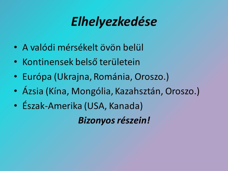 Elhelyezkedése A valódi mérsékelt övön belül Kontinensek belső területein Európa (Ukrajna, Románia, Oroszo.) Ázsia (Kína, Mongólia, Kazahsztán, Oroszo