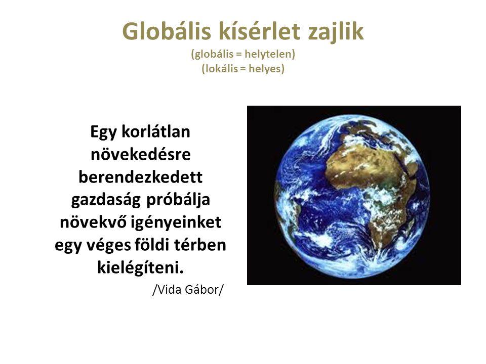 Globális kísérlet zajlik (globális = helytelen) (lokális = helyes) Egy korlátlan növekedésre berendezkedett gazdaság próbálja növekvő igényeinket egy