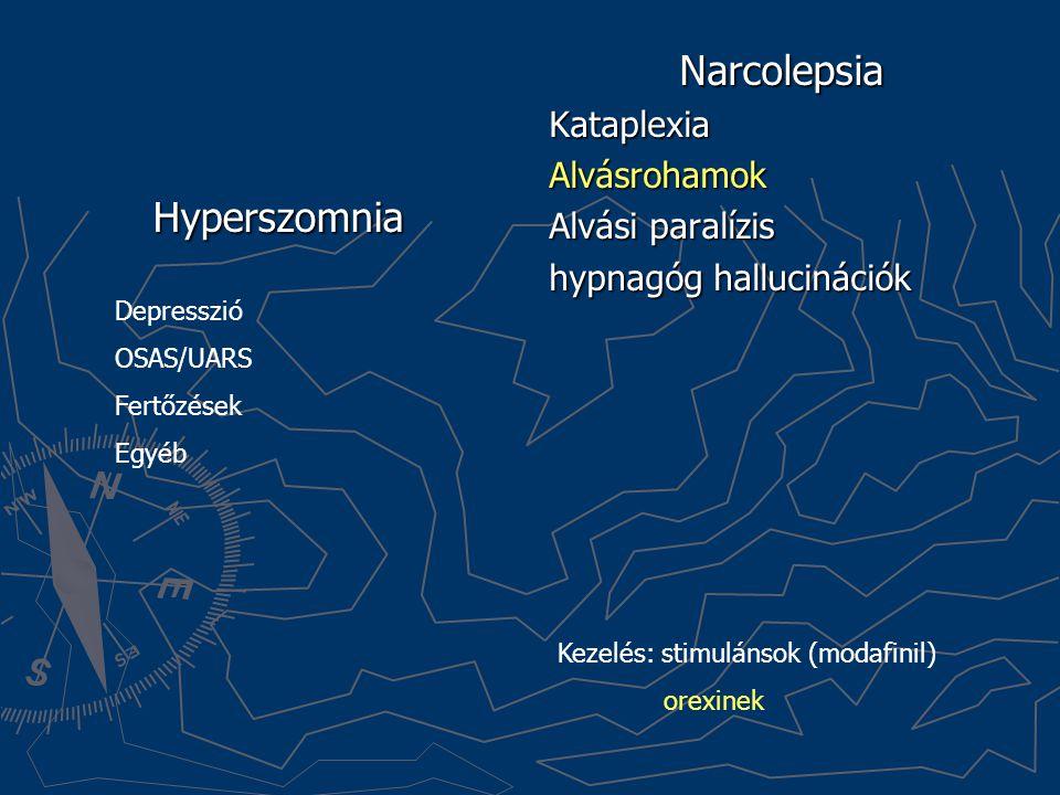 Hyperszomnia Narcolepsia Kataplexia Alvásrohamok Alvási paralízis hypnagóg hallucinációk Depresszió OSAS/UARS Fertőzések Egyéb Kezelés: stimulánsok (m