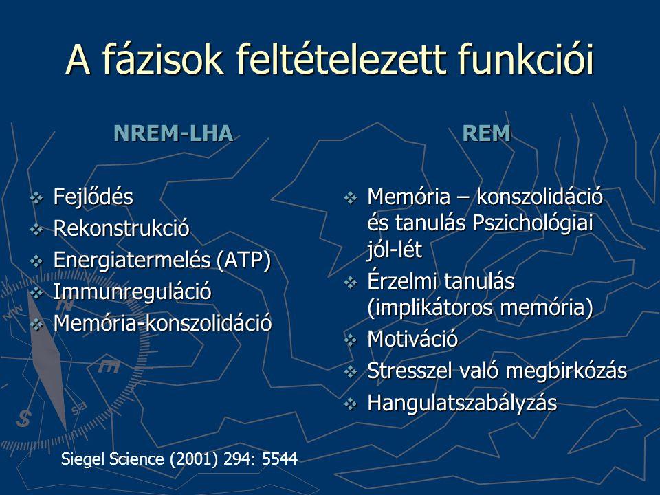 A fázisok feltételezett funkciói NREM-LHA  Fejlődés  Rekonstrukció  Energiatermelés (ATP)  Immunreguláció  Memória-konszolidáció REM  Memória –