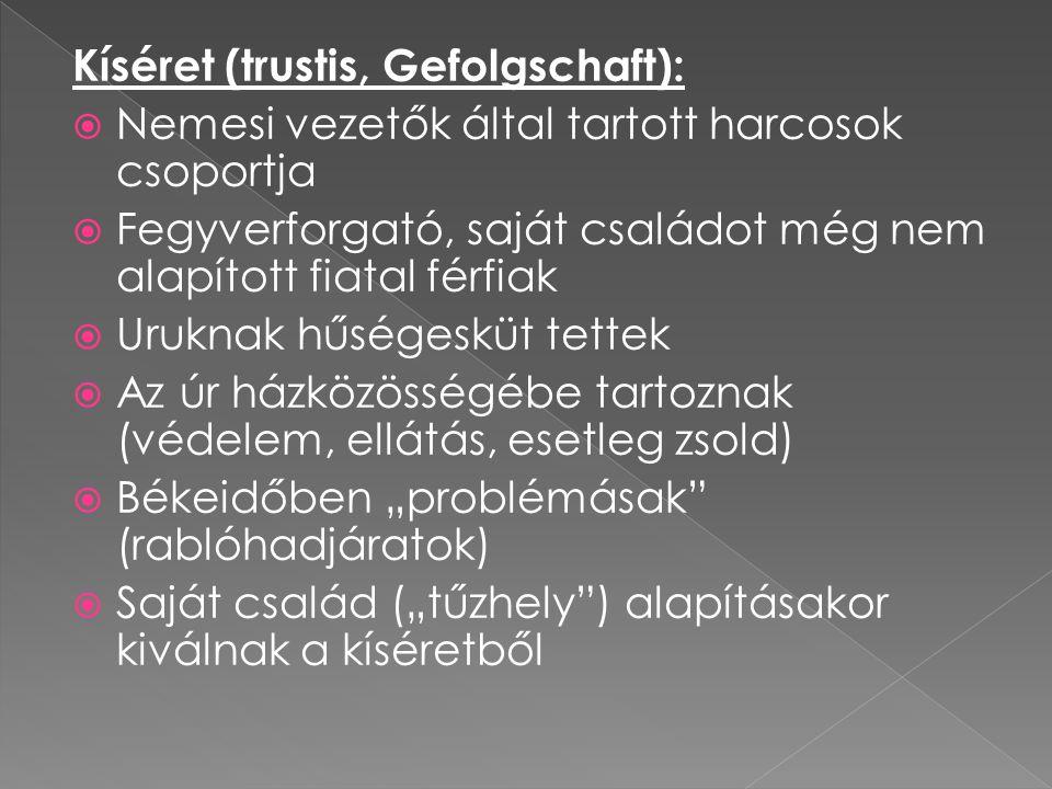 Kíséret (trustis, Gefolgschaft):  Nemesi vezetők által tartott harcosok csoportja  Fegyverforgató, saját családot még nem alapított fiatal férfiak 