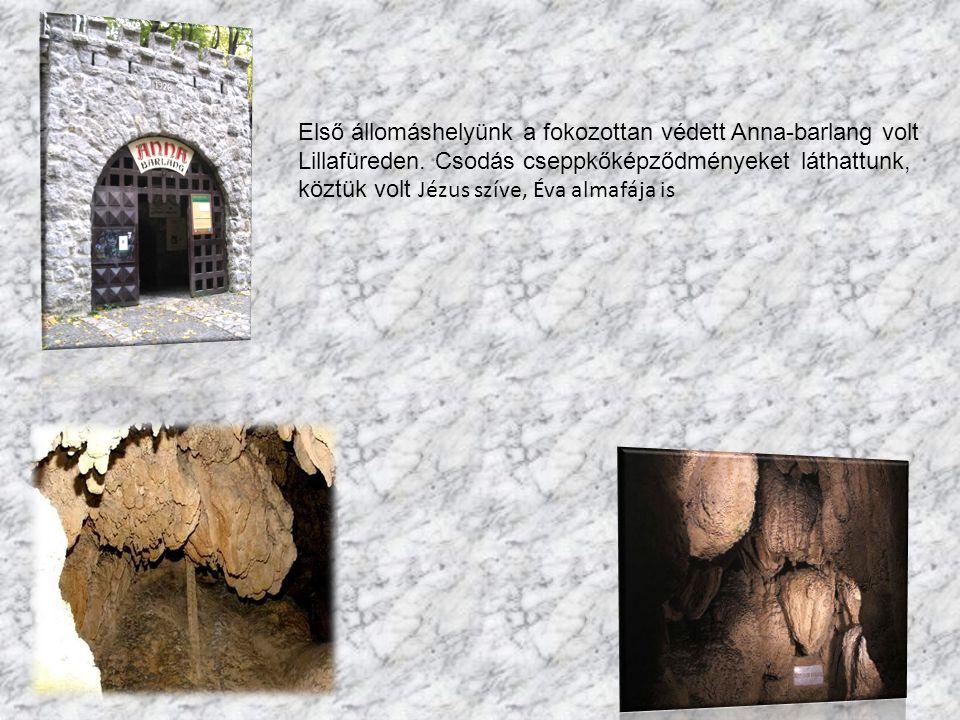 Első állomáshelyünk a fokozottan védett Anna-barlang volt Lillafüreden.